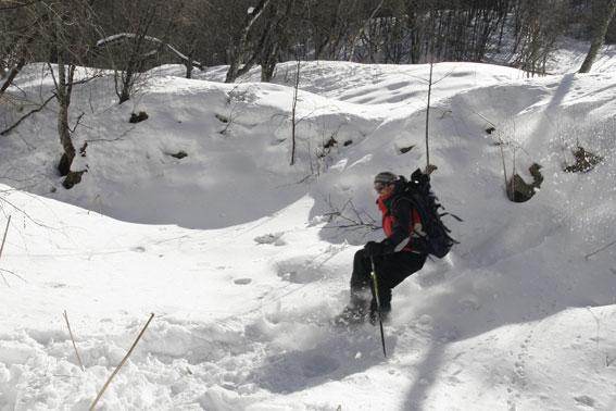 Как доехать из Краснодара до Адлера? - Форум об отдыхе в Сочи 2014. nocddv